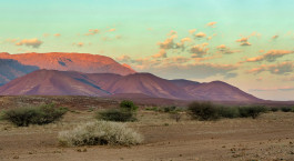 Destination Damaraland (Brandberg and Spitzkoppe) Namibia