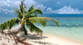 Reiseziel Pulau Selingan Malaysia