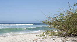 Reiseziel Punta Mita Mexiko