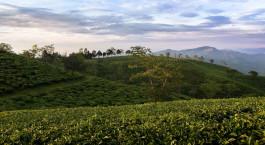 Reiseziel Balipara Ostindien