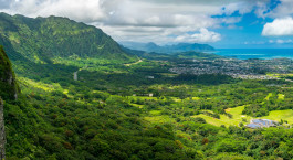 Reiseziel Oahu Hawaii