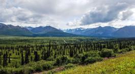Reiseziel Tok Alaska