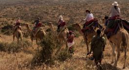 Destination Laikipia – Sabuk Kenya