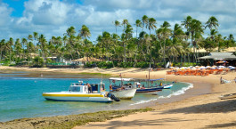 Destination Praia do Forte Brazil