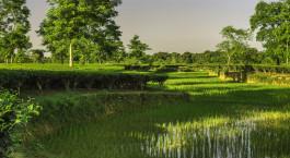Destination Jorhat East India