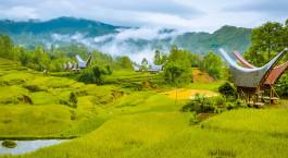 Reiseziel Sulawesi, Toraja Indonesien