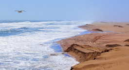 Destination Skeleton Coast Namibia