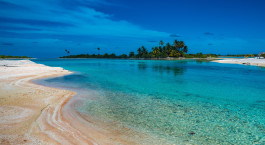 Reiseziel Tikehau Französisch Polynesien