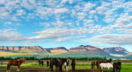 Reiseziel Varmahlíð Island