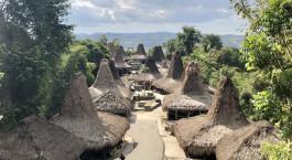 Reiseziel Tarung & Waitabar Indonesien