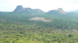 Reiseziel Niassa Game Reserve Mosambik