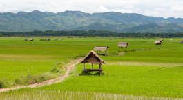 Reiseziel Luang Namtha Laos