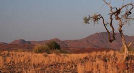 Destination Damaraland (Palmwag) Namibia