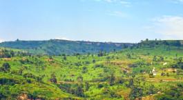 Reiseziel Mbale Uganda