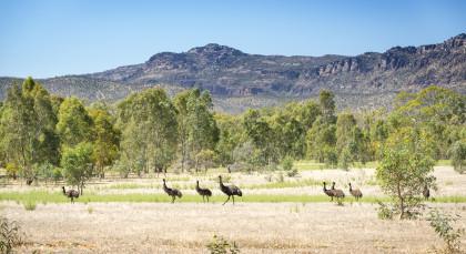 Destination The Grampians National Park in Australia