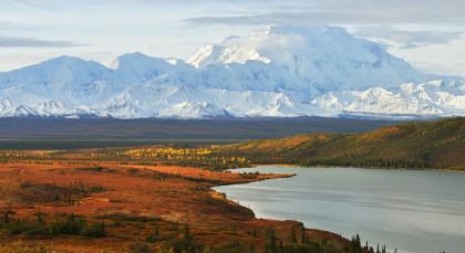 Denali Nationalpark in Alaska
