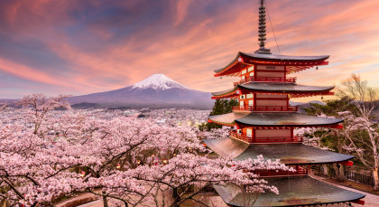 Destination Mt Fuji in Japan