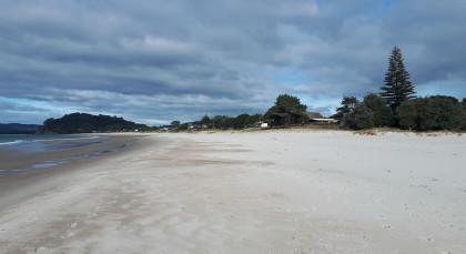 Whitianga in Neuseeland