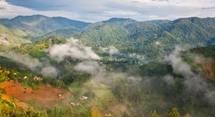 Bwindi in Uganda
