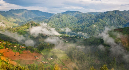 Destination Bwindi in Uganda