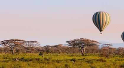 Tarangire in Tansania