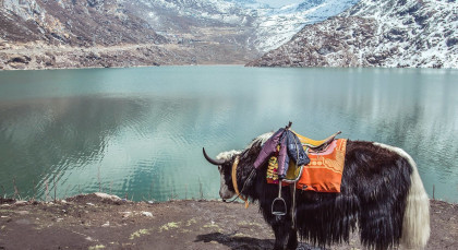 Destination Gangtok in East India