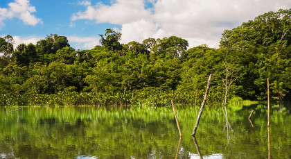 Destination Yasuni in Ecuador/Galapagos
