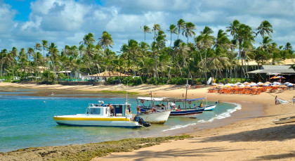 Destination Praia do Forte in Brazil
