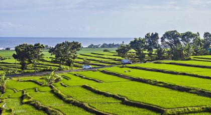 Bali,Jembrana in Indonesien
