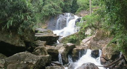 Sinharaja Regenwald in Sri Lanka