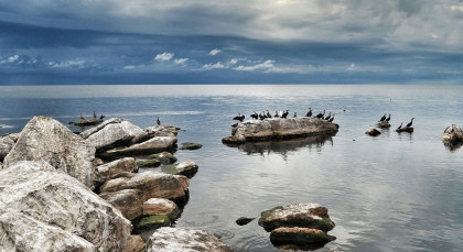Rubondo Island in Tansania