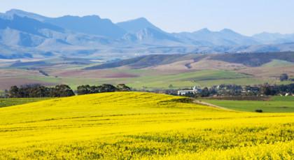 Overberg in Südafrika