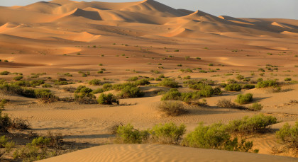 Destination Liwa in United Arab Emirates