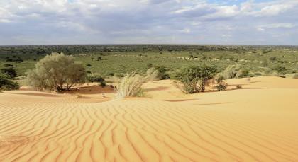 Destination Kalahari Desert in South Africa