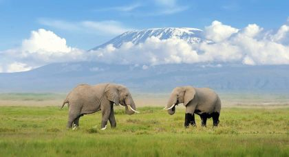 Destination Kilimanjaro in Tanzania