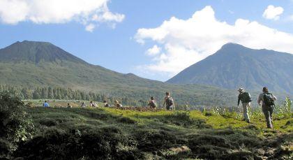 Destination Volcanoes National Park in Rwanda