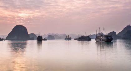 Halong-Bucht und Bucht von Lan Ha in Vietnam