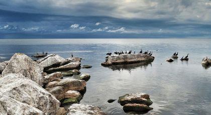 Destination Rubondo Island in Tanzania