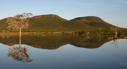 Destination Madikwe in South Africa