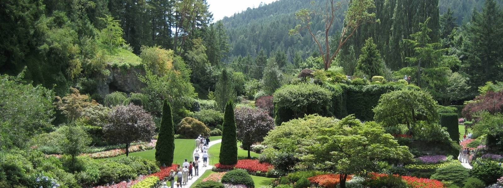a green plant in a garden with Butchart Gardens in the background