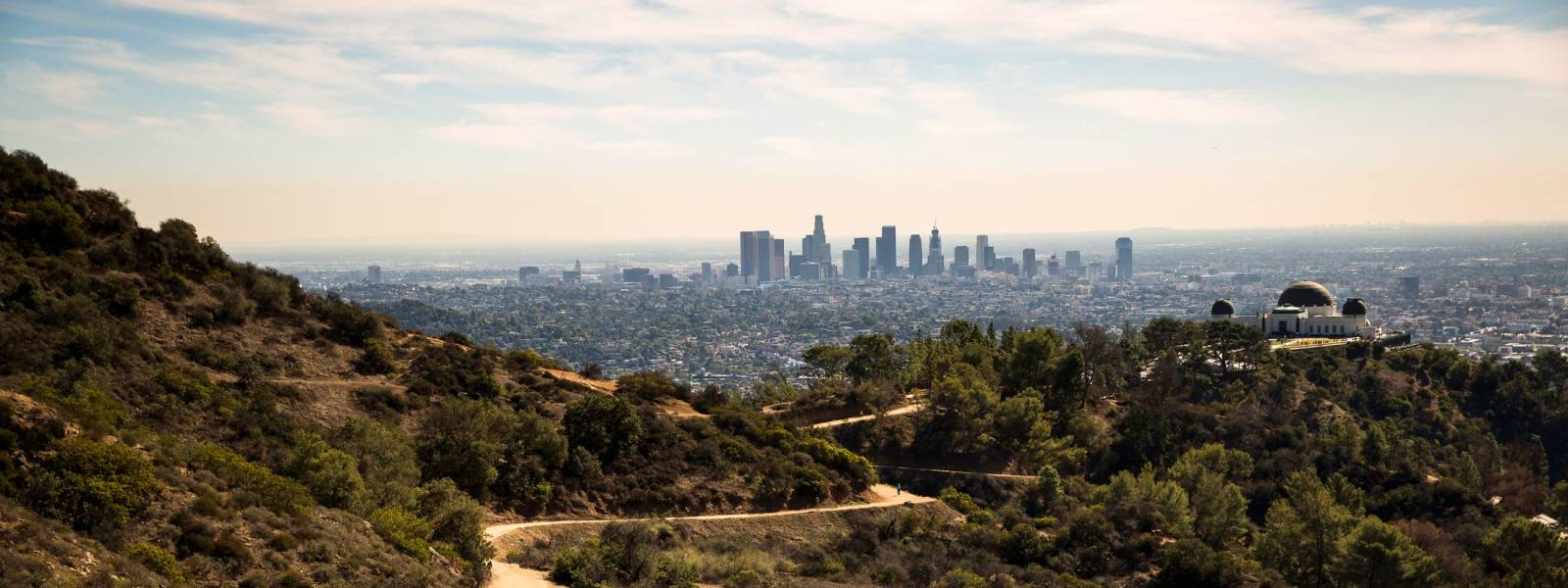 City Views from the Hollywood Hills
