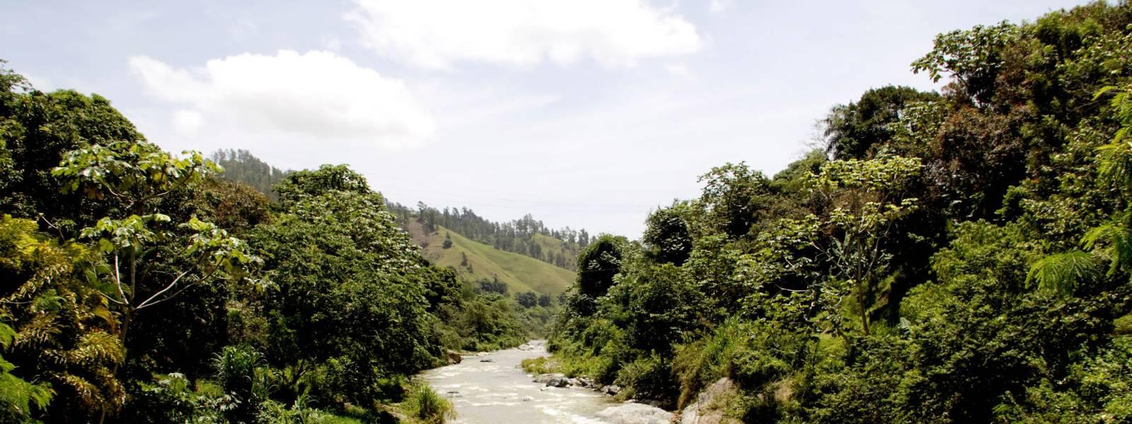 Jarabacoa River