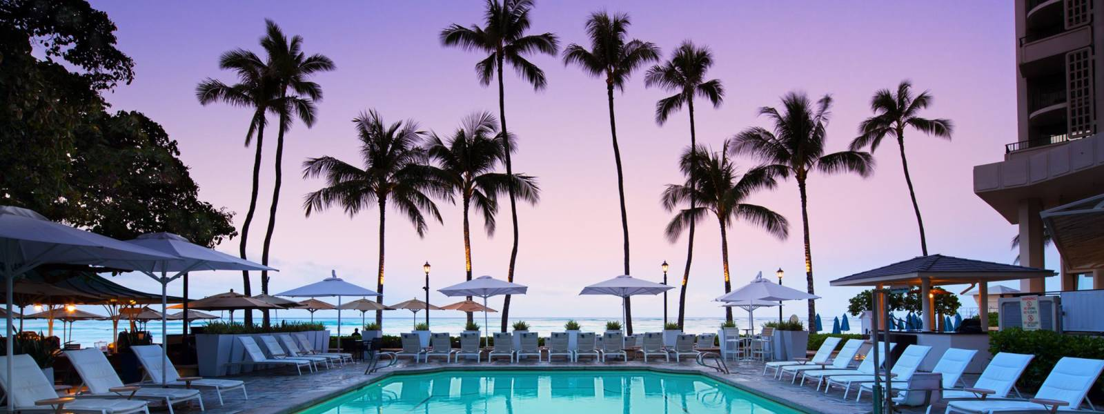 a group of palm trees next to a swimming pool