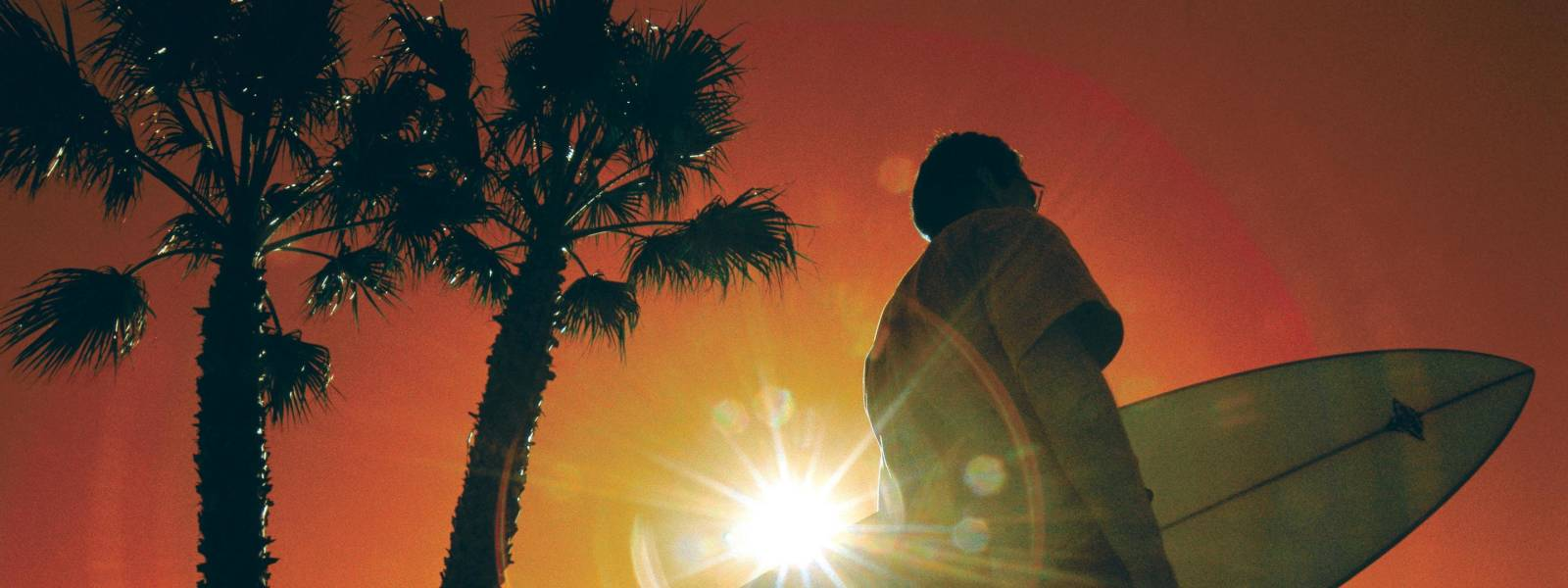 a man standing next to a palm tree in front of a sunset