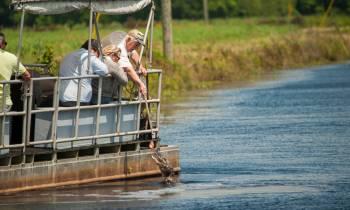 Cajun Swamp Tour Houma Louisiana couresty of Houmas