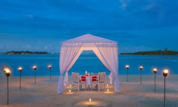 Romantic Dining on Beach