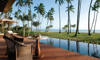 a pool next to a palm tree