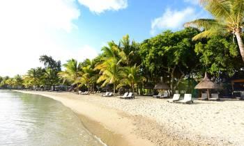 Ravenala beach
