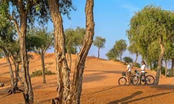 a person riding a bike down a dirt road