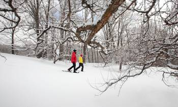a man is cross country skiing in the snow